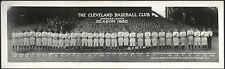 "1920 Cleveland Indians, Antique Baseball, World Series winners, 30""x10"" PHOTO"