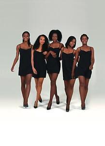 Pendeza Toned Collection Tights 15 Denier 5 different Tones Sizes Small - XL