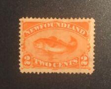 Stamps Canada Newfoundland Sc48 2c red orange Codfish of 1896. See description