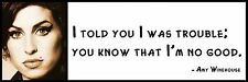 Wall Quote - Amy Winehouse - I told you I was trouble; you know that I'm no good