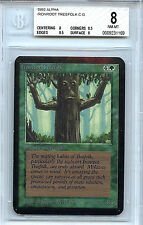 MTG Alpha Ironroot Treefolk BGS 8.0 (8) NM/MT Card Magic the Gathering WOTC 116