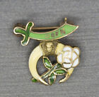 Vintage Daughters of the Nile Shriners Lapel Pin in 14k