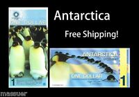 ANTARCTICA $1 Banknote World Money Currency Penguin 2011 Polymer Note Lot Of 1