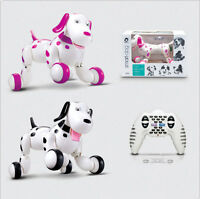 Remote Control I ROBOT DOG CAT Walking Nodding Toy Pet Puppy Electronic Light