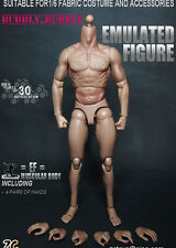 1/6 Muscular Nude Male Figure TTM19 Fit Wolverine Head ZC Toys SHIP FROM USA