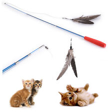 Cat interactive toy BIRD Guinea Feather Teaser Wand w/ refills Feathers da Gifts