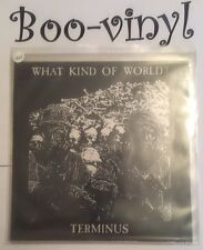"""TERMINUS 7"""" Vinyl Record What Kind Of World Wow16 Ex Con"""