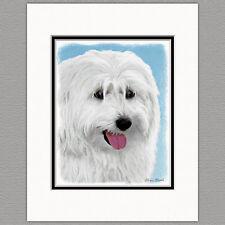 Polish Lowland Sheepdog Original Art Print 8x10 Matted to 11x14