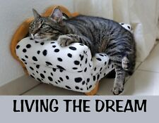 Metal Fridge Magnet Tabby Cat Laying On Fainting Couch Living The Dream Humor