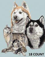 Pack of Husky Dogs/Huskies - Animal Cross Stitch Kit - 14, 18 Count Aida, Anchor