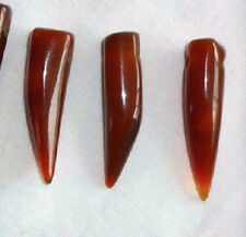 "12 Beautiful, Carnelian Stone ""Wolf Teeth"" ,""Bear Claw"" Beads, Stone Claw Beads"