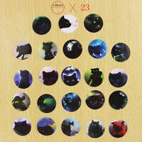 46Pcs / Set Star Sky Black Cats Tagebuch Aufkleber Briefpapier T0H H7E2
