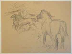 Pferde auf der Weide - Otto Dill - Kreidelithographie Skizze Studie Wiese - 1930