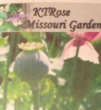 FRESH Afghan Blue Poppy Seeds 2 LB Unwashed & Organic Papaver Somniferum