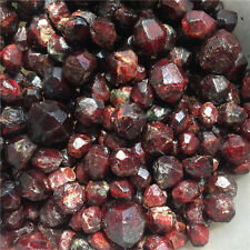 80g Natural Garnet Crystal Rock Rough Specimen wholesale #12