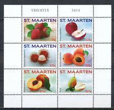 SINT MAARTEN 2014 - VRUCHTEN / FRUITS - POSTFRIS BLOK                      Hk62