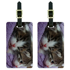 Kittens - Kitty Cats Luggage Suitcase Carry-On ID Tags Set of 2