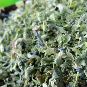 Fresh Organic Dried Catnip Nepeta Cataria Cat Mint Supplies Leaf Flower Herbal
