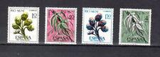 Spanish RIO MUNI Stamps - 1967 - Trees, Nature, Cactus In MNH Condition
