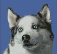 Huskie Puppy Dog Counted Cross stitch kit