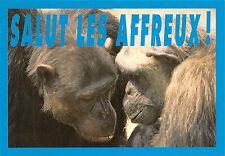 Br43958 Salut les Affreux Singes monkey animaux animals