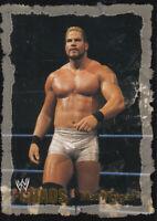 2004 Fleer WWE Chaos Gold #53 Matt Morgan