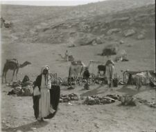 Campement Bédouins Colonialisme Palestine Plaque verre stereo Vintage ca 1930