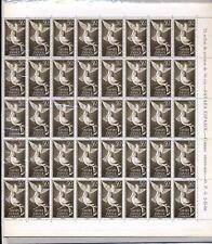 SPAIN COLONIES SAHARA 1961 BIRDS 50c...MINT FULL SHEET