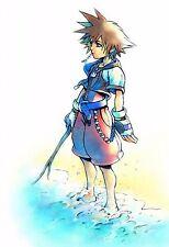 Kingdom Hearts Boy 1 2 Game Fabric Art Cloth Poster 20inch x 13inch Decor 38