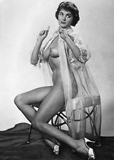 Pinup Virginia Gordon 1960s Nude In Open Silk Gown 8 x 10 Photograph