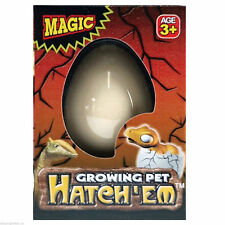 Magic Dino Eggs Growing Hatching Dinosaur Add Water Child Toy,BRAND NEW-TY63
