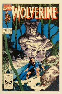Wolverine #25 (10GM! The Spectacular Jim Lee 25th Issue Patch Cover! Iconic!)