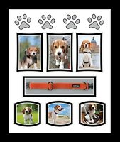 Personalised Dog Photo Picture frame Dog Collar Memory frame White Mount