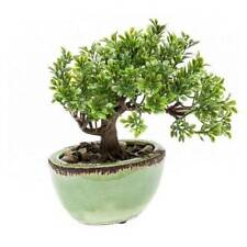 künstlicher Bonsai FICUS im Keramik Topf H. 19cm grün Emerald