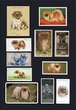 PEKINGESE MOUNTED COLLECTION OF VINTAGE DOG CARDS GREAT GIFT