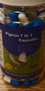 Racing Pigeon 7 in 1