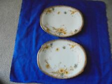 Antique English Porcelain Doulton Burslem 2 X Oval Plates - 1891