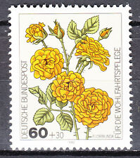 BRD 1982 Mi. Nr. 1151 Postfrisch LUXUS!!!