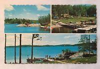 Vintage Black Sturgeon Camp Kenora Ontario Canada Postcard