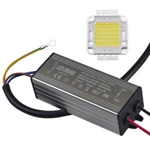 10W 20W 30W 50W 100W LED Chip Bulb 12V 24V + LED Driver Power Supply 110V 220V