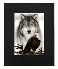 Eagle & Wolf 8x10 matted Art Print Printed Poster Decor picture Gift Display