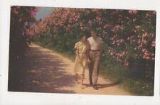 Oleander Time In Bermuda 1948 Postcard 842a