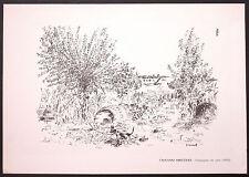 ANTICA STAMPA - GIOVANNI OMICCIOLI - Campagna con cane (1955) - CM. 34x24