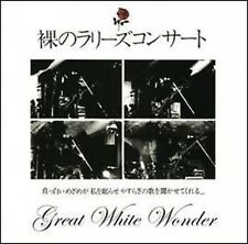 LES RALLIZES DENUDES - GREAT WHITE WONDER - 4 CD BOX