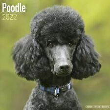 Poodle Calendar 2022 Dog Breed Wall Calendar 15% OFF MULTI ORDERS!