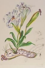 """SALVADOR DALI """"Lilies of time"""" HAND SIGNED COA Surrealistic Flowers Etching"""