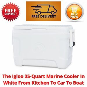 The Igloo 25-Quart Marine Cooler In White From Kitchen To Car To Boat