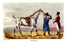 FOX HUNTER RED HUNT COAT, BOBBED DOCKED HUNTING HORSE FIELD HUNTING ALKEN PRINT