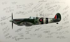 Royal CANADIAN Air Force 443Sq WW2 SPITFIRE PILOTS original multi-signed artwork