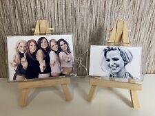 More details for girls aloud sarah harding set of 2 jumbo fridge magnet and keyring gift set